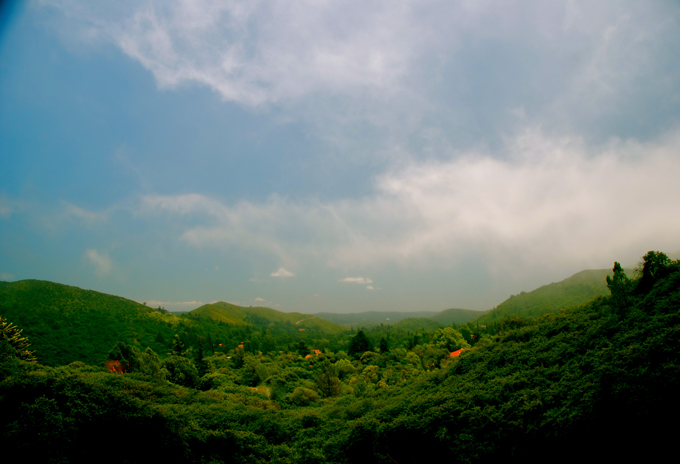 Views - 11